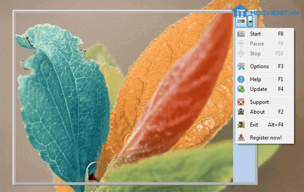 Giao diện phần mềm Screen GIF