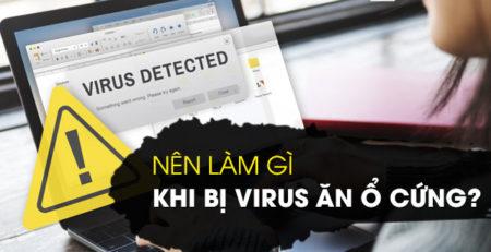 Nên làm gì khi bị virus ăn ổ cứng?