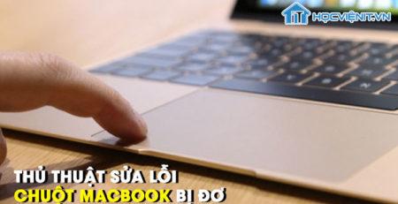 4 thủ thuật sửa lỗi chuột MacBook bị đơ nhanh chóng