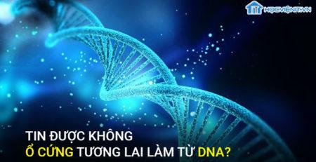 Tin được không ổ cứng tương lai làm từ DNA