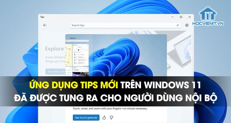 Ứng dụng Tips mới trên Windows 11 đã được tung ra cho người dùng nội bộ